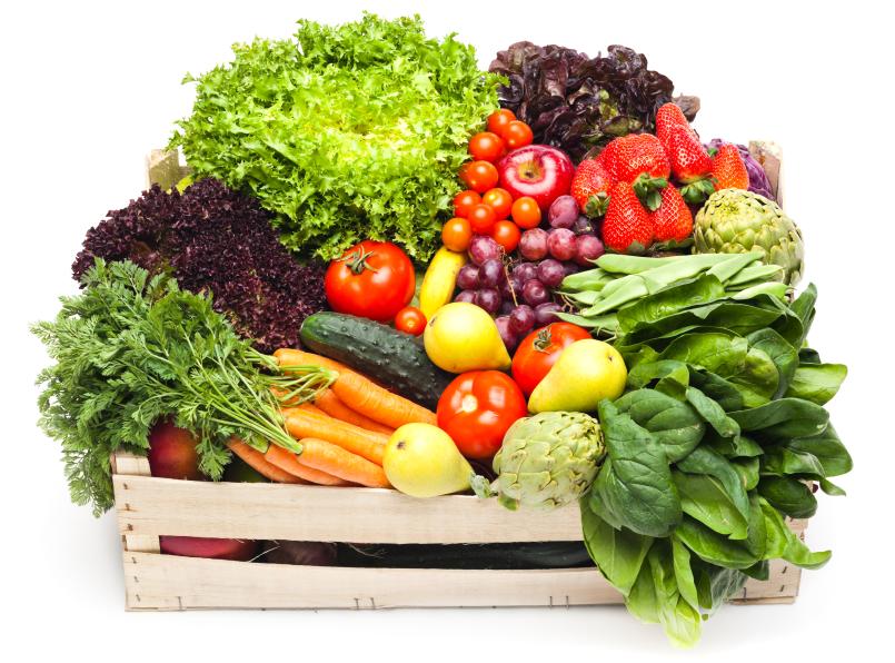 Zöldség palánta rendelés